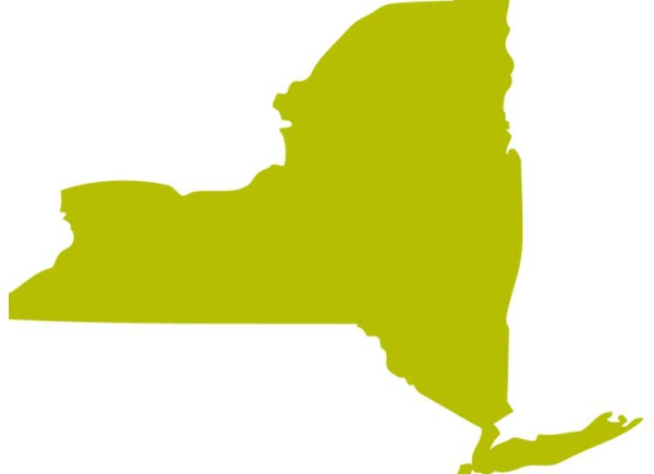 NYS Disability Long-Term Care Facility Map